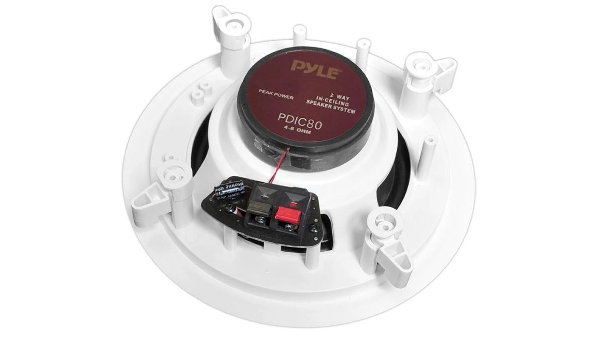 PDIC80