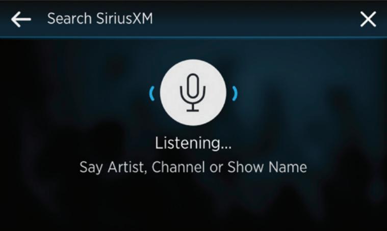 SiriusXM SXWB1V1